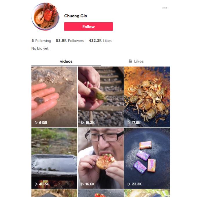 50K Food TikTok Account for Sale