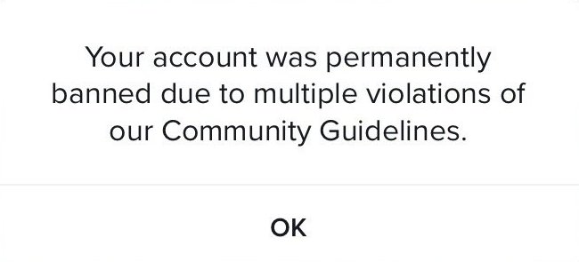 Your account was permanently banned due to multiple violations of our Community Guidelines TikTok