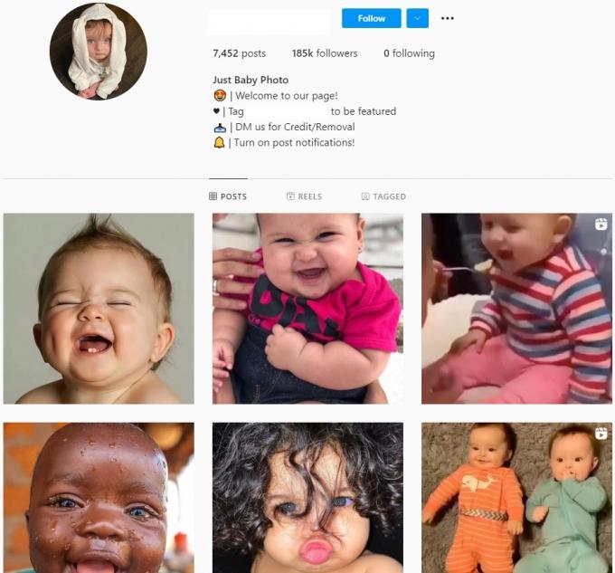Buy Kids Baby Instagram Account with 185K Followers